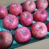 【初ふるさと納税】大阪府泉佐野市の「青森県弘前産EMりんご3kg」シャキシャキ、甘み十分です