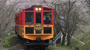 嵯峨野観光鉄道、嵯峨野トロッコ列車開業30周年記念イベントを開催!
