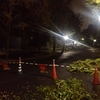台風21号襲来の夜に大阪城公園ナイトランニング