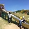 竜王山公園オートキャンプ場.1:竜の遊具