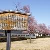 春を探して、カメラ片手に少し早い会津若松桜&梅散歩をしてきました..!2021