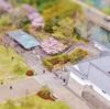 駿府城公園の桜は見ごろ