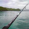 16カラマレッティーインプレ春イカ釣行IN熊野、尾鷲