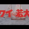 映画「ハワイの若大将」(1963年 東宝)