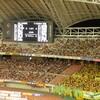 2007-09-02   9/1  新潟x千葉 東北電力ビッグスワンスタジアム