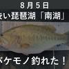 8月5日 渋い琵琶湖「南湖」でバケモノ釣れた!!【ロクマル?!】