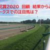 NHKマイルC 2020 回顧 レシステンシアは惜しくも2着