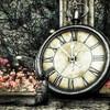 自分の時間(体感時間)を増やす方法 (。☌ᴗ☌。)