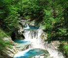 西沢渓谷の満開なシャクナゲと乾徳山・黒金山に登ってみる!!