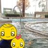 ヒルトン小田原に幼児連れで宿泊しました!朝食ブッフェとプールが最高!