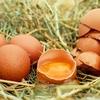 アメリカ女子友に教わった、生卵ハチミツパックが、凄すぎた件