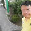 さくら-リベンジ-隅田公園(墨田区) (墨田区の隅田公園)   2013/7/14