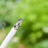 タバコは誰でも禁煙できる!その理由とタバコがもたらす害や病気と寿命の関係性