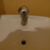 しあわせの青い鳥ならぬ「銀のきのこ」 お手洗いの流すところにある水道蛇口