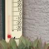 今朝の多肉。朝の気温は2℃でした。紅葉途中のエケベリアと姫秋麗