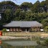 浄瑠璃寺の春