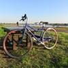 多摩リバー100km、すみません自転車です