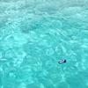 海に浮く空き缶