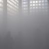 霧と風とバスタブと(猫):今、「小山さん彡」を感じるモノたち
