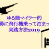 お得に飛行機乗ったりホテルに泊まる!ゆる陸マイラー的実践法2019