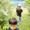 夏キャンプ!7/23 県民の森にて