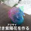 動画 ペットボトルで色付き紫陽花を作る