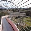裾野市運動公園で109mローラーすべり台を満喫する