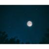 皆既月食見えましたか??我が家はしっかり見えました!