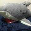 俺の名前はサメ次郎。【特大サメぬいぐるみのレビュー】