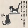我が家の猫②(リーちゃん)