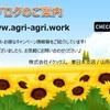 Hướng dẫn cho tất cả các công ty liên quan đến nhà kính nông nghiệp tại Việt Nam