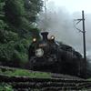 東武鉄道 SL大樹 の撮影に行ってきました