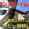 小田急ロマンスカー「VSE」で箱根へ! 最高すぎる旅館「マウントビュー箱根」に泊まる旅【2020-06箱根1】