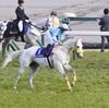 ◆予想結果◆3/24(日) 特選穴馬&軸馬候補