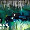 メキシコの神秘的な水中洞窟でダイビング
