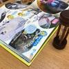 子供にスマホのカメラと図鑑を与えたら動物や植物に興味が集中した話