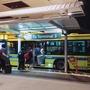 【バスが楽だった】成田空港第3ターミナル〜第2ターミナルは徒歩とバスどっちが良いのか実際に検証!