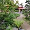 苔散策  庭園3