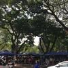 タイのバンコク1人旅【第10話】チュラーロンコーン大学でナンパをする。