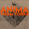 【映像和訳】ANIMA / Thom Yorke - 映像に隠された意図