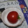 フルーツルビーET(その7)