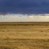 【ユーラシア大陸横断】中国(北京)〜モンゴル(ウランバートル)の砂漠を格安で陸路移動してみた