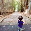 【成長記録】2歳0か月(修正1歳10ヶ月)の振り返り