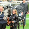 17/03/14 National Hunt Racing - Cheltenham Festival - Supreme Novices' Hurdle (G1)