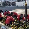 花苗の植樹のボランティア