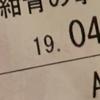 【平成最後の映画コナン感想】平成のホームズ 平成のルパン そして蹴撃の貴公子【紺青の拳】