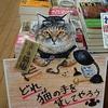 新作「お直し処猫庵 お困りの貴方へ肉球貸します」発売中! 書店様の画像や謝辞など