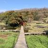 平和な湿性公園に隠された 厳島弁財天秘話(中井町)
