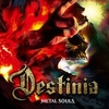 METAL SOULS / Nozomu Wakai's DESTINIA (2018 FLAC)
