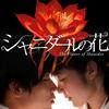 シャニダールの花(2013) 映画感想